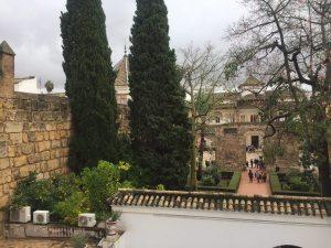 foto-2-patio-del-leon